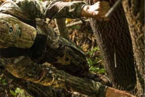 News & Tips: Tree Stand Safety Tips