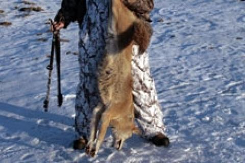 News & Tips: Offseason Hunting Basics: Prepare for Next Season...