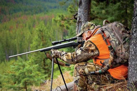 News & Tips: Choosing the Best Ammo Caliber for Hunting Plus Ammo Terms...