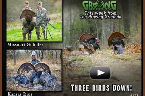 News & Tips: Bow Hunting a Kansas Rio & the Missouri Turkey Opener...