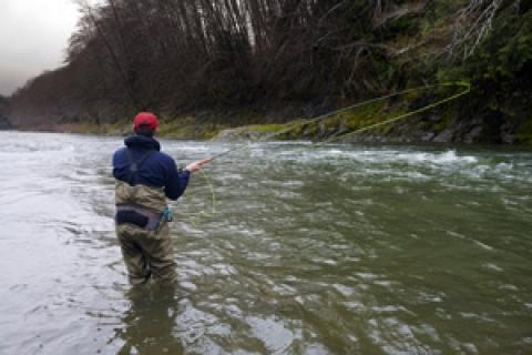 News & Tips: Tips for Using a Wading Staff