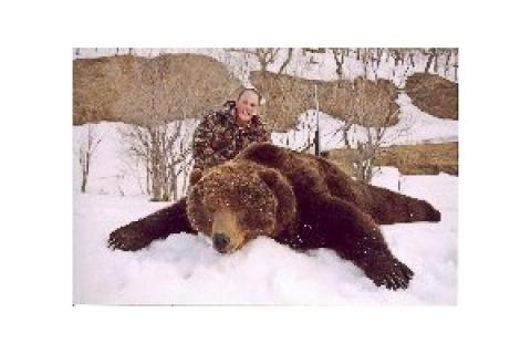 News & Tips: Alaska's Giant Brown Bears