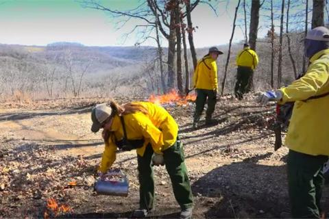 News & Tips: Deer Management: A Late Winter Prescribed Fire for Better Hunting  (video)...