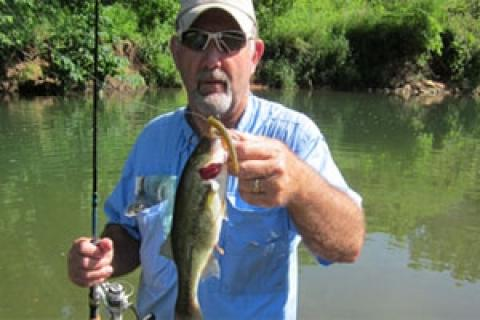 News & Tips: 3 Tips to Summer Wade Fishing Ozark Streams...