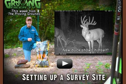 News & Tips: Why & How to use Trail Cameras for a Deer Survey...