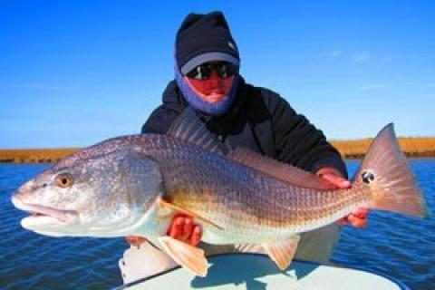 News & Tips: Flats Fishing for Redfish