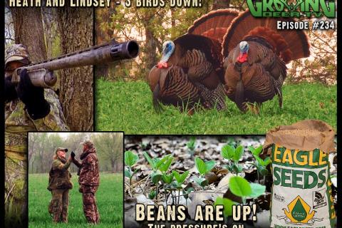 News & Tips: Prime Archery Challenge Plus Turkey Hunting - Tagging A Tom!...