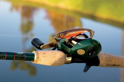 News & Tips: 4 Timeless Types of Fishing Reels