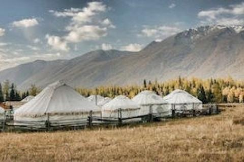 News & Tips: Yurt Camping 101