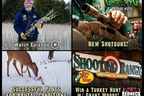 News & Tips: Winter Food Plot Combinations That Work for Whitetails (video)...