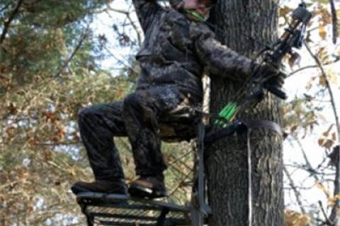 News & Tips: What to Look For in a Climbing Treestand...