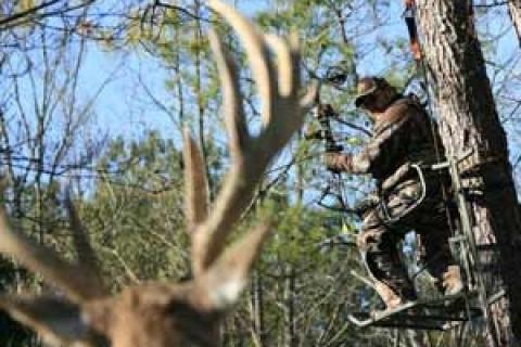 News & Tips: Will You Be Ready for the Kill Shot When Bowhunting?...