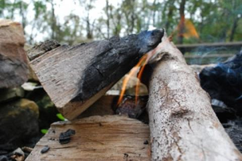 News & Tips: Don't Let a Campfire Become a Wildfire...