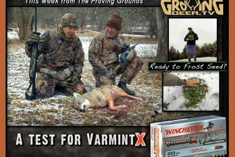 News & Tips: Winter Coyote Hunt & Tips for Frost Seeding Food Plots...
