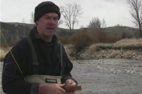 News & Tips: Fly Fishing Westslope Cutthroat Trout in Western Montana...