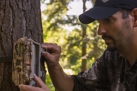 Hunter setting up game camera