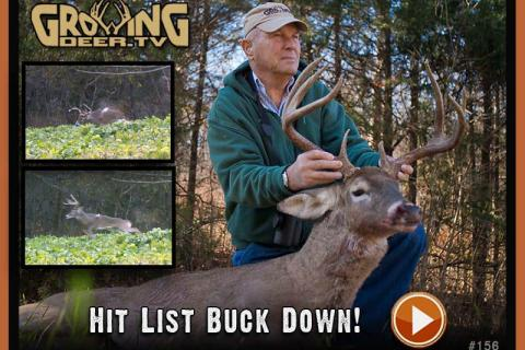 News & Tips: Hit List Buck Down
