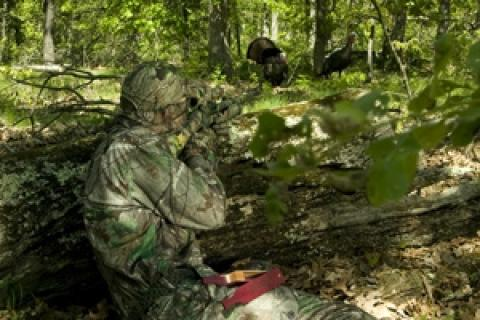 News & Tips: Can't Mouth Call? You Can Still Kill a Turkey...