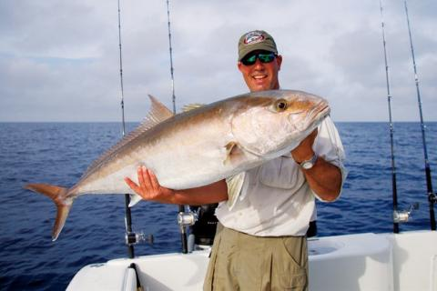 News & Tips: Can You Tell a Tuna From a Bluefish? Test Your Fish Knowledge With This Quiz...