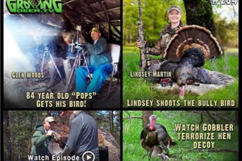 News & Tips: Turkey Hunting Old Toms and Super Jakes (video)...