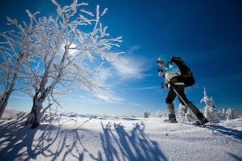 News & Tips: What to Do if You Get Lost on a Winter Hike...