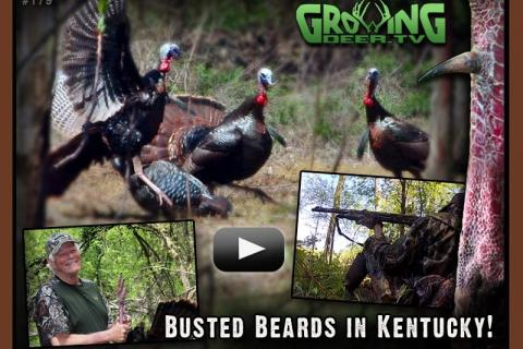 News & Tips: Best Turkey Hunt of the Year: Busted Beards in Kentucky...