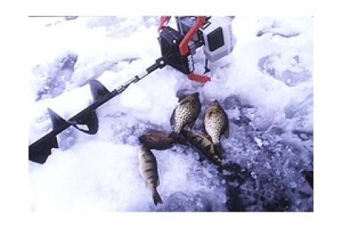 News & Tips: Gearing Up for Ice Fishing
