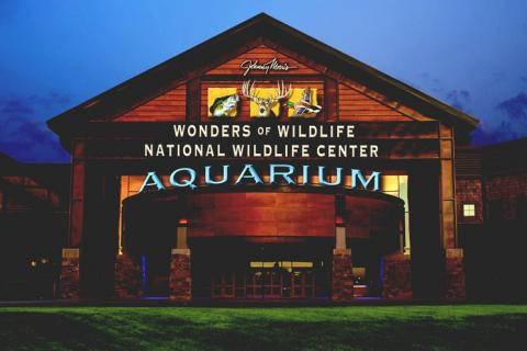 News & Tips: Johnny Morris' Wonders of Wildlife National Museum and Aquarium Featured on Bass Pro Shops Outdoor World Radio...