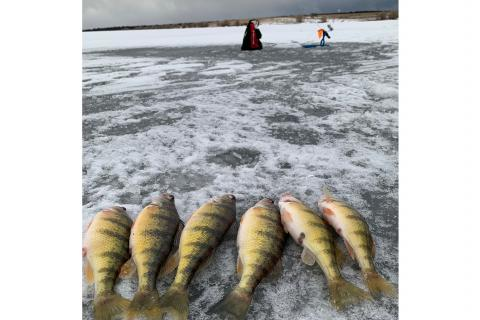 ice fishing tip up tactics