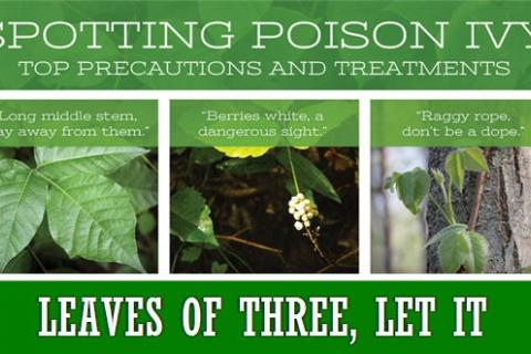News & Tips: 12 Little Known Facts About Poison Ivy (infographic)...