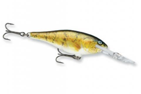 News & Tips: The Ultimate Winter Crankbait