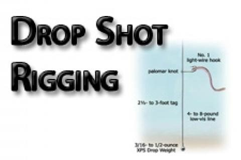 News & Tips: Drop Shot Rigging