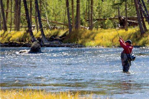 News & Tips: Fly Fishing: Cast a Grasshopper Fly to Fool Fall Trout...