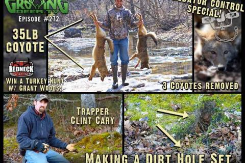 News & Tips: How To Make A Dirt Hole Set: Trapping Coyotes (video)...