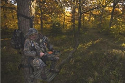 News & Tips: Ways to Keep the Wind From Blowing Your Chances on a Buck...
