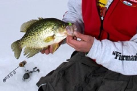 News & Tips: Ice Fishing: Tips for Winter Crappie