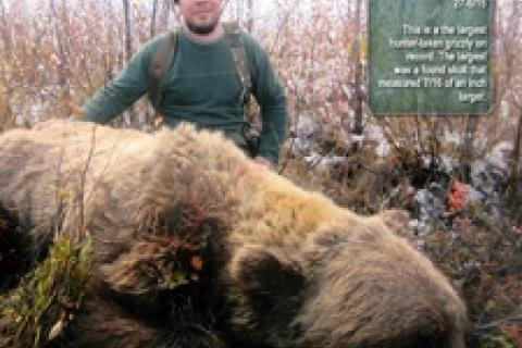 News & Tips: 3 Great Places to Hunt for Grizzly Bears...