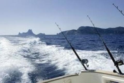 News & Tips: Keeping Saltwater Reels, Rods & Lures Clean...