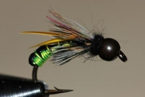 News & Tips: Tying the Wired Caddis