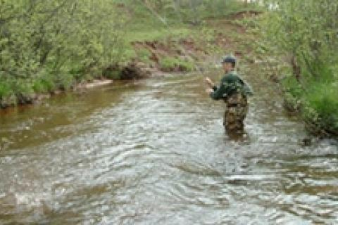 News & Tips: Pocket Water Trout Fishing