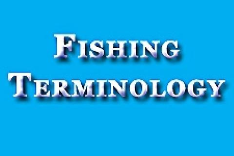 News & Tips: Fishing Terminology, Fishing Words and Fishing Phrases