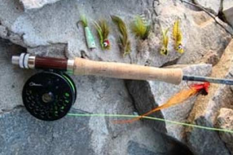 News & Tips: Topwater Fly Fishing for Bass