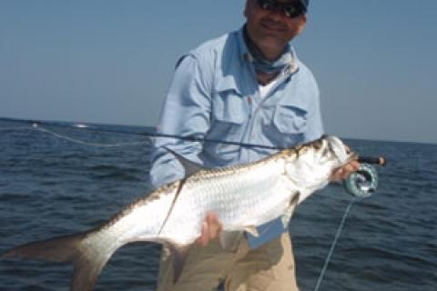 News & Tips: Fly Fishing for Baby Tarpon