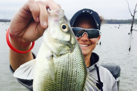 Lady angler at Lake Fort holding up a larg white bass