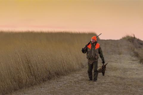 Pheasant hunter walking down a prairie road with pheasant in hand