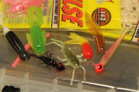Several soft plastic panfish lures