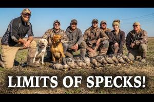 Limit Of Specks