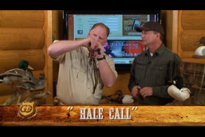 1Source Video: Bring More Mallards to the Blind with this Duck Calling Sequence