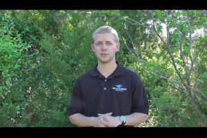 1Source Video: Arrow and Broadhead Buying Guide