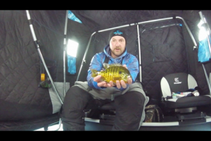 1Source Video: Draw Blue Gills in With Rattle Baits